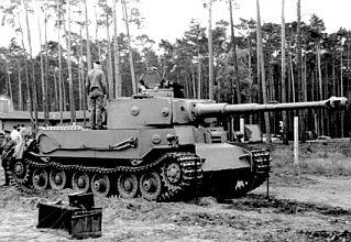 tiger-p-1.jpg